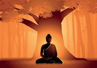Under the Tenderness Tree Blog